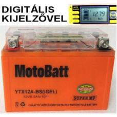 YTX12A-BS igel